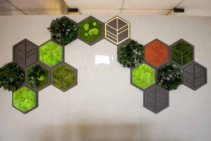 Alle Hexagons