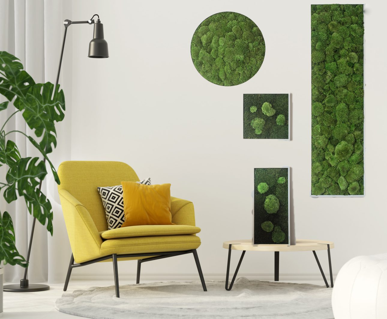 NATURADOR® moss and plant pictures - from real plants
