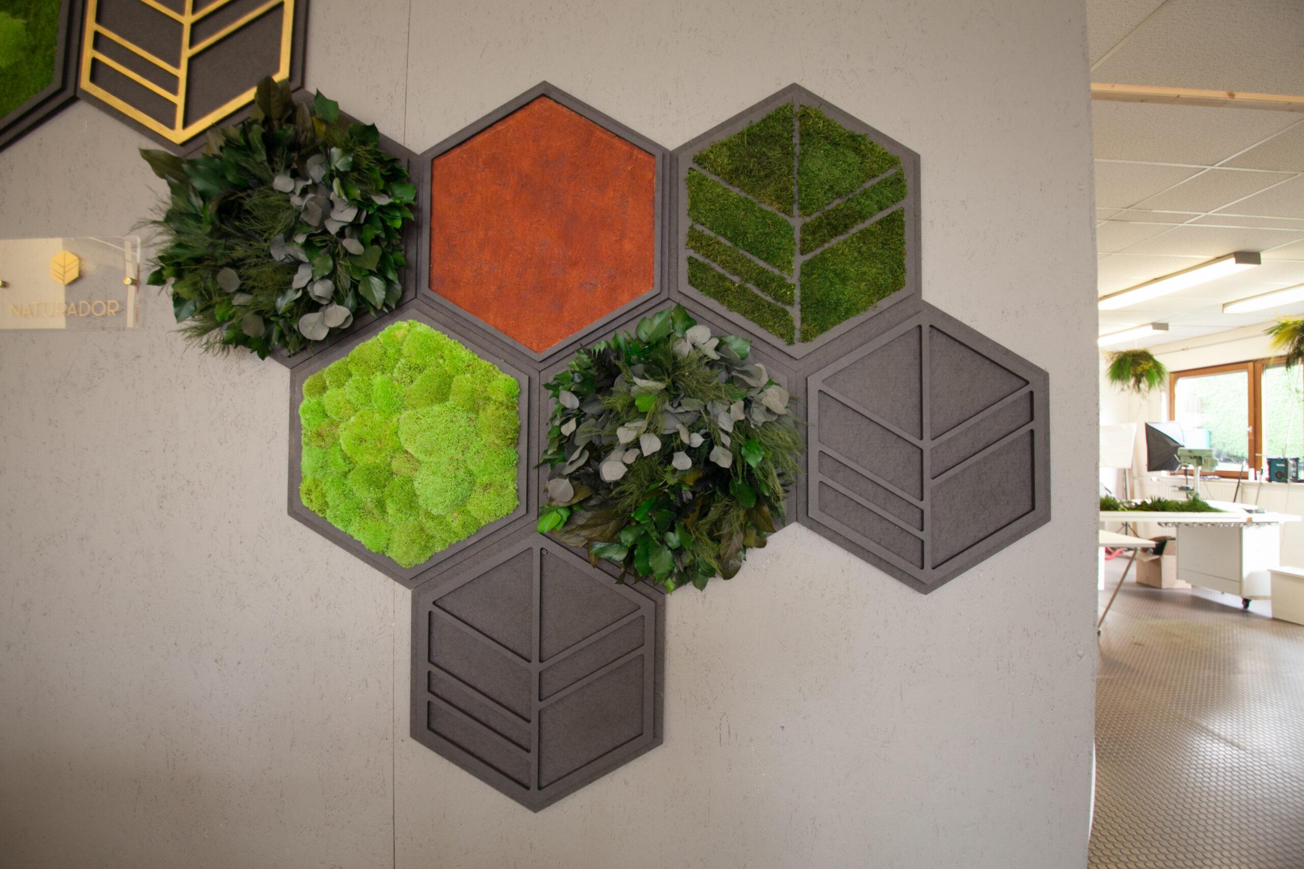 NATURADOR Hexagons Ambiente