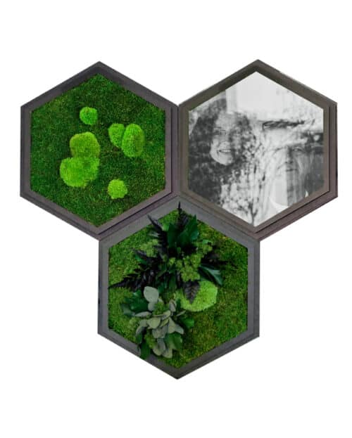 NATURADOR Hexagon 3erSet mit Foto