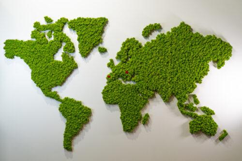 Weltkarte Islandmoos