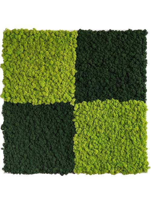 NATURADOR® Islandmoos zweifarbig maigrün/blattgrün