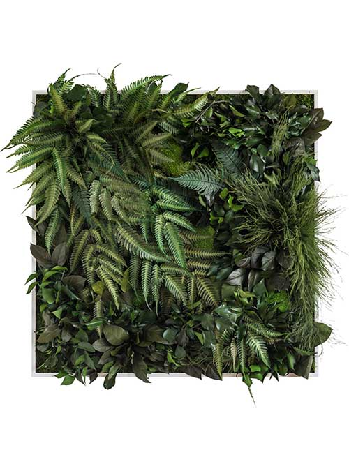 NATURADOR® Dschungel